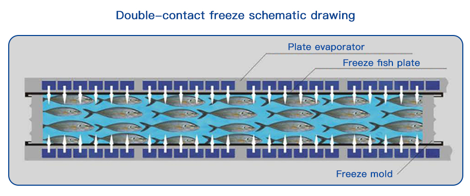 Double-contact freeze schematic drawing